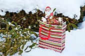 Christmas goody-bag with mistletoe, biscuits and apple