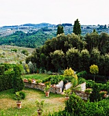 View of surrounding landscape from garden