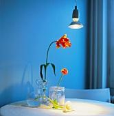 Flowers in vases on table under spotlight