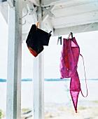 Swimming trunks and bikini on washing line