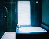 Bathroom with bathtub and shower area