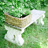Basket of plants on Greek-style, antique stone bench