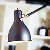 Desk lamp (detail)