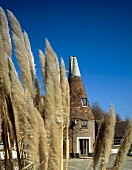 Converted oast house and wind-blown grasses on country estate