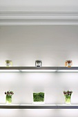 Illuminated glass shelving decorated with pretty preserves jars and flowers