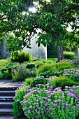 Herbaceous borders and fountain in park (Killesbergpark, Stuttgart, Germany)