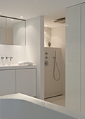 A white designer bathroom with a separate shower area