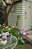 Spring flowers on garden table and in flowerbed next to shed
