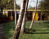 Group of trees in garden in front of bungalow