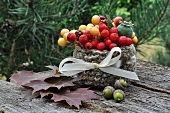 Autumnal arrangement with berries, crab apples, leaves & acorns