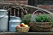 Old milk cans, fruit basket & basket of flowers on wooden bench