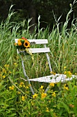 Folding chair decorated with flowers in summer meadow