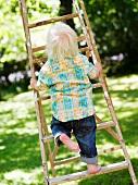 Toddler climbing up a ladder