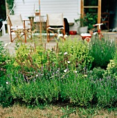 Herb bed in front of terrace
