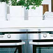 Herb pots on a kitchen counter with built-in kitchen appliance
