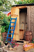 Blue ladder leaning on the wall of a tool shed