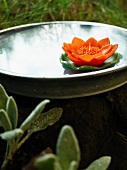Water lily-shaped candle in a metal bowl