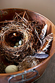 Stylised nest with feathers and various eggs in metal dish