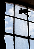 Bird ornament attached to pane of lattice window