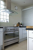 Designer kitchen with stainless steel cooker and extractor hood