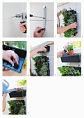 DIY - attaching brackets for flower boxes on a garden wall