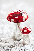Festive fly agarics