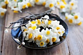 Circlet of white narcissus flowers on plate