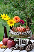 Autumn table centre of pumpkin, dahlias, apples and pine cones