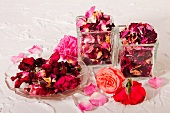 Roses and dried rose petals