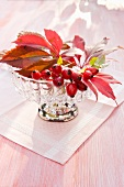 Rosehips and Virginia creeper leaves in glass bowl