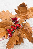 Brown oak leaves and rosehips on rustic linen
