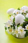 Easter arrangement: wood anemones and eggs with white shells