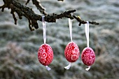 Three painted Easter eggs hanging on branch of apple tree