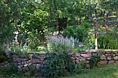 Rustikale Steinmauer mit blühenden Gartenblumen
