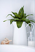 White pitcher with leaves next to a soap dispenser on the vanity