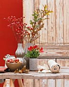 Autumn table centrepiece with rosehips