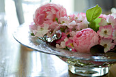 Glass dish of pink roses on wooden table (English roses, shrub roses)