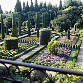 English gardens with flower beds and topiary cypress trees