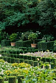 English country manor gardens with flower beds and topiary hedges