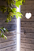 Virginia creeper in front of rustic, wooden front door with heart-shaped cut-out and latch hook