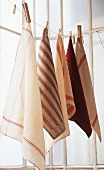Various tea towels on a washing line