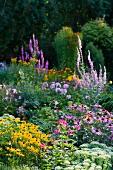 Colourful, flowering garden