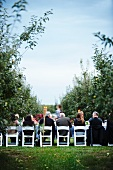 People Eating a Dinner Set Up in an Apple Orchard
