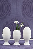 Easter eggs (one with snowdrops) in egg cups