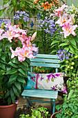 Blauer Gartenstuhl auf der Terrasse, umgeben von Lilien, Schmucklilien und Tomaten