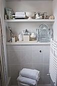 Shelves of toiletries and vintage ornaments above tiled WC area