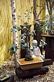 Designer garden with bonsai trees and Buddha sculpture