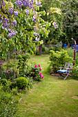 Garden chair in idyllic wild garden