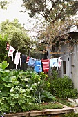 Vegetable with wooden surround and children's clothing on washing line