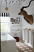 Simple bathtub below window and hunting trophy on wall of bathroom